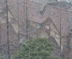上海 2004年 - 雪 / 2004-01-18 12:20