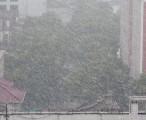 上海 2004年 - 雪 / 2004-01-18 12:21
